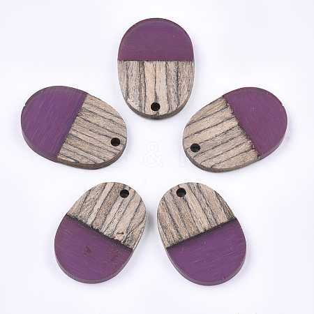 Resin & Wood Pendants RESI-T023-01I-1-1