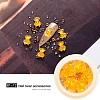 Nail Art Decoration AccessoriesMRMJ-Q072-81-12-1