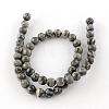 Natural Map Stone/Picasso Stone/Picasso Jasper Beads StrandsG-S188-6mm-3