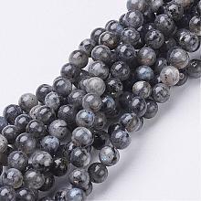 Natural Labradorite Beads Strand GSR6mmC128